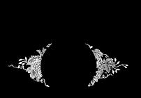 inglenook-logo (2)